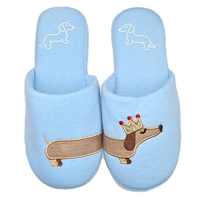 dachshund slippers