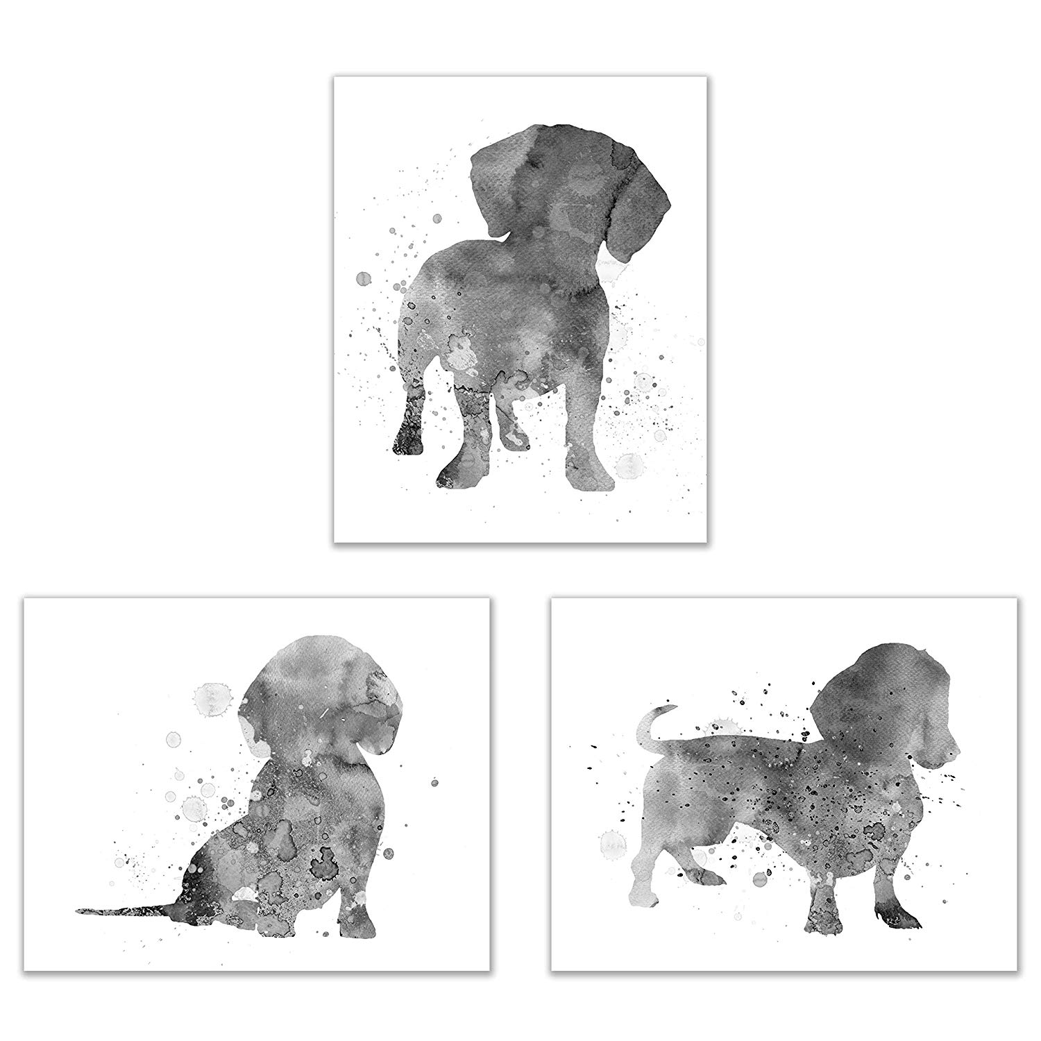 Dachshund Black and White Watercolor